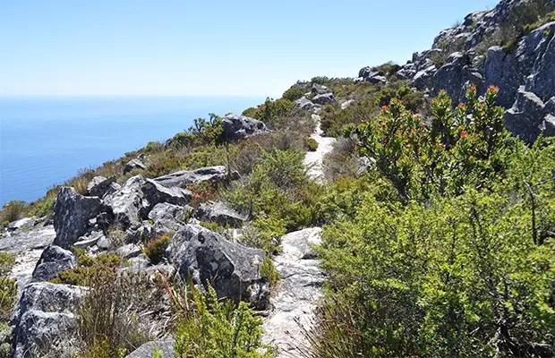 Como subir a Table Mountain