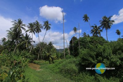 Kampung Sungai Burung, Balik Pulau, Penang