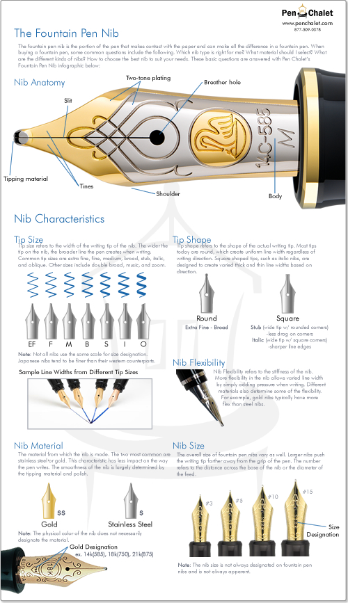 Fountain Pen Nib Infographic