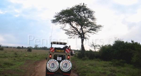 Penfan Tours 4x4 Landcruiser tour van safari drive at Nairobi National Park