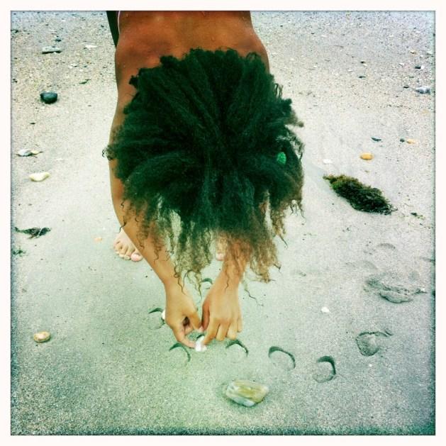 Shells On The Sea Shore