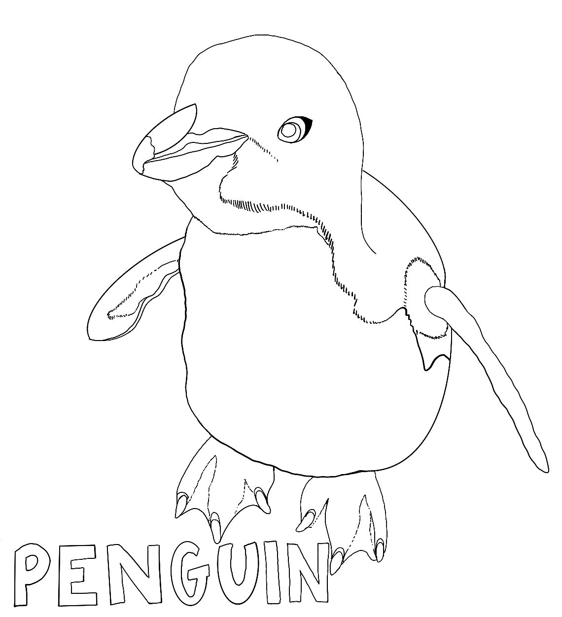 Penguin Coloring Page 7 Penguins International