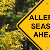 Allergy Season Sign- Header