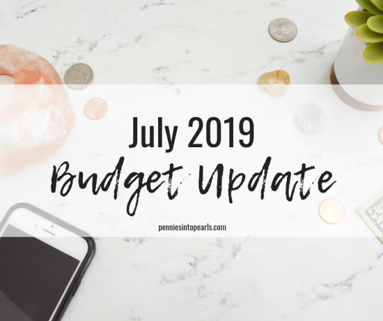 Today I am sharing the real numbers for our July 2019 Budget Update! I am also talking about some changes I have made to my business budget and how that affects our families numbers!