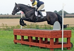 Pennineview Silver Concorde - 2009 sport horse stallion - Cross Country