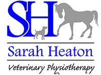 Sarah Heaton - Veterinary Equine Physiotherapist