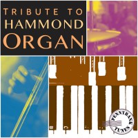 TRIBUTE TO HAMMOND ORGAN