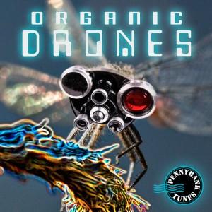 PNBT 1038 ORGANIC DRONES