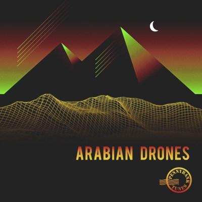 PNBT 1151 ARABIAN DRONES