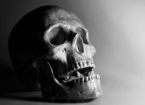 skull-449550_1280