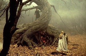sleepy_hollow_tree