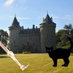 légende château de combourg chat noir