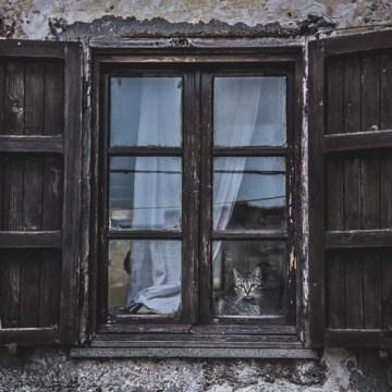 Srbija: Za 20 godina, 128.000 manje Srba