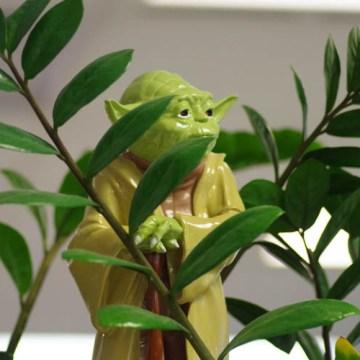 6 karakteristika mudrosti