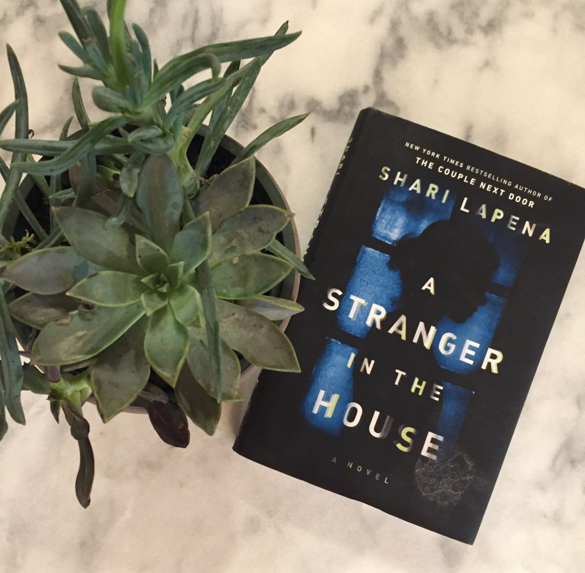 Book Review | A Stranger in the House by Shari Lapena
