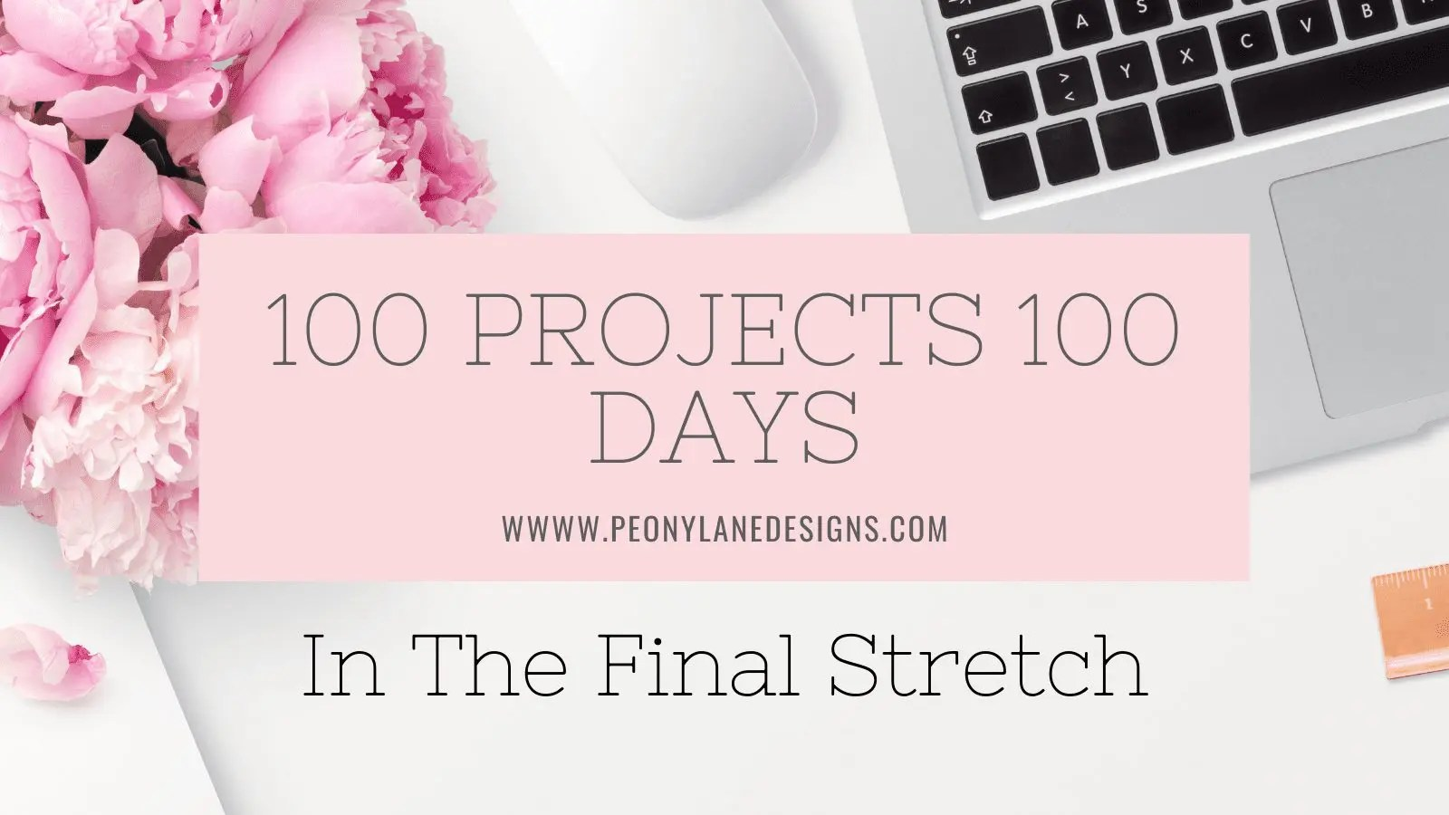 100 Projects 100 Days the Final Stretch