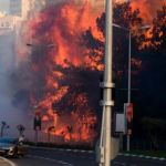 Twelve arrested over mass Israel wildfires