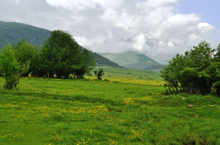 Near Dendropark Stepanavan Armenia