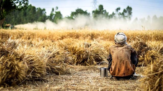 Farmers' struggle pushing the BJP backfoot