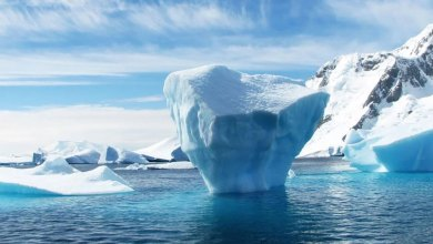 4°C would unleash 'unimaginable amounts of water' as ice shelves collapse – People's World