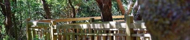 Anaga y su entorno natural