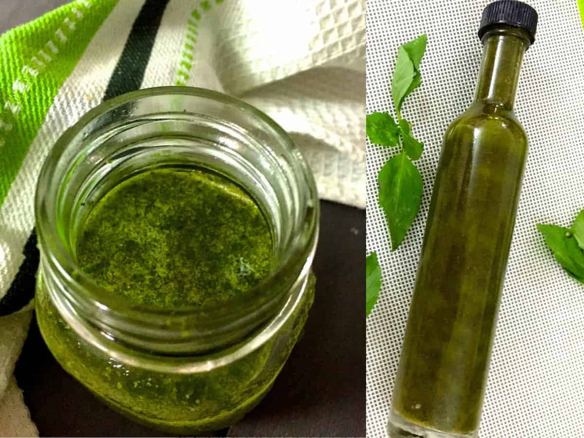 Easy Fragrant Homemade Basil Oil