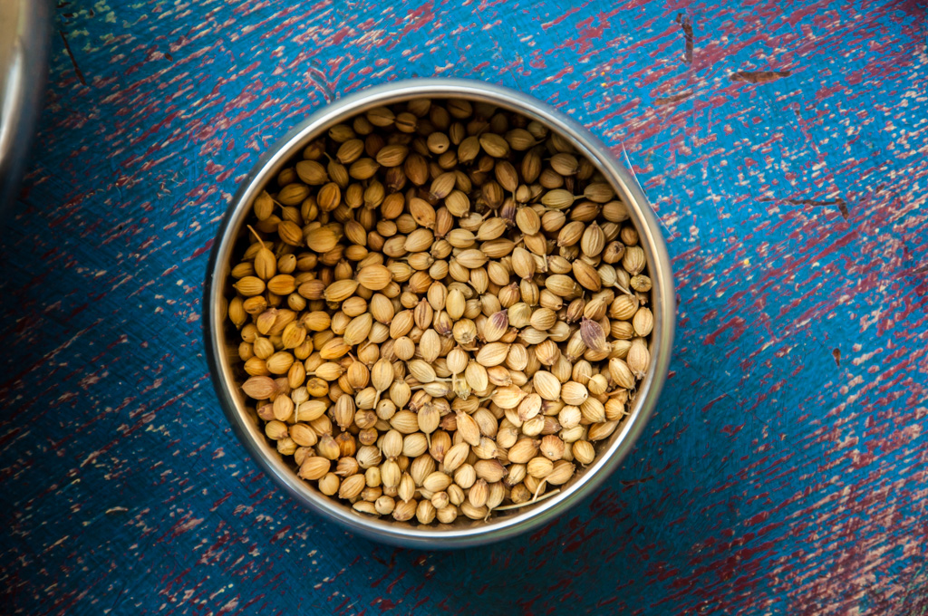 basic indian spices - coriander seeds