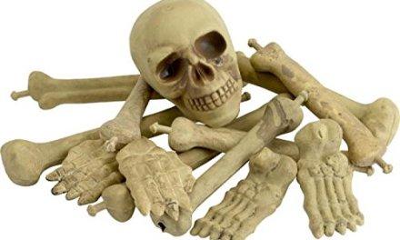 Smiffy's Bag of Bones Various Bones in Net Bag
