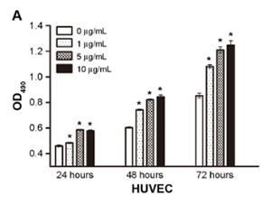 BPC-157 concentration versus vascular endothelial cell growth