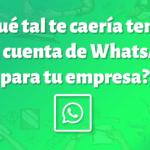 ¿WhatsApp para tu empresa? Ahora será posible con WhatsApp Business