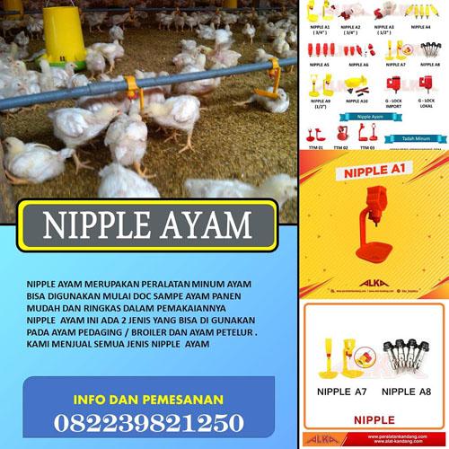 alat kandang, alat kandang ayam, distributor nipple ayam, jual nipple ayam broiler murah, jual nipple ayam murah, napel ayam, napple ayam, napple kandang ayam, nepel kandang ayam, nipel ayam, niple ayam, nipple, nipple ayam, nipple ayam broiler, nipple ayam pedaging, nipple ayam petelur, nipple broiler, nipple kandang ayam broiler, peralatan kandang, peralatan kandang ayam, supplier nipple ayam
