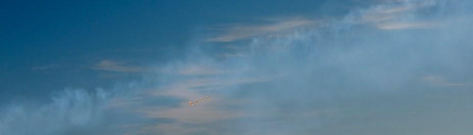 Airshow 8