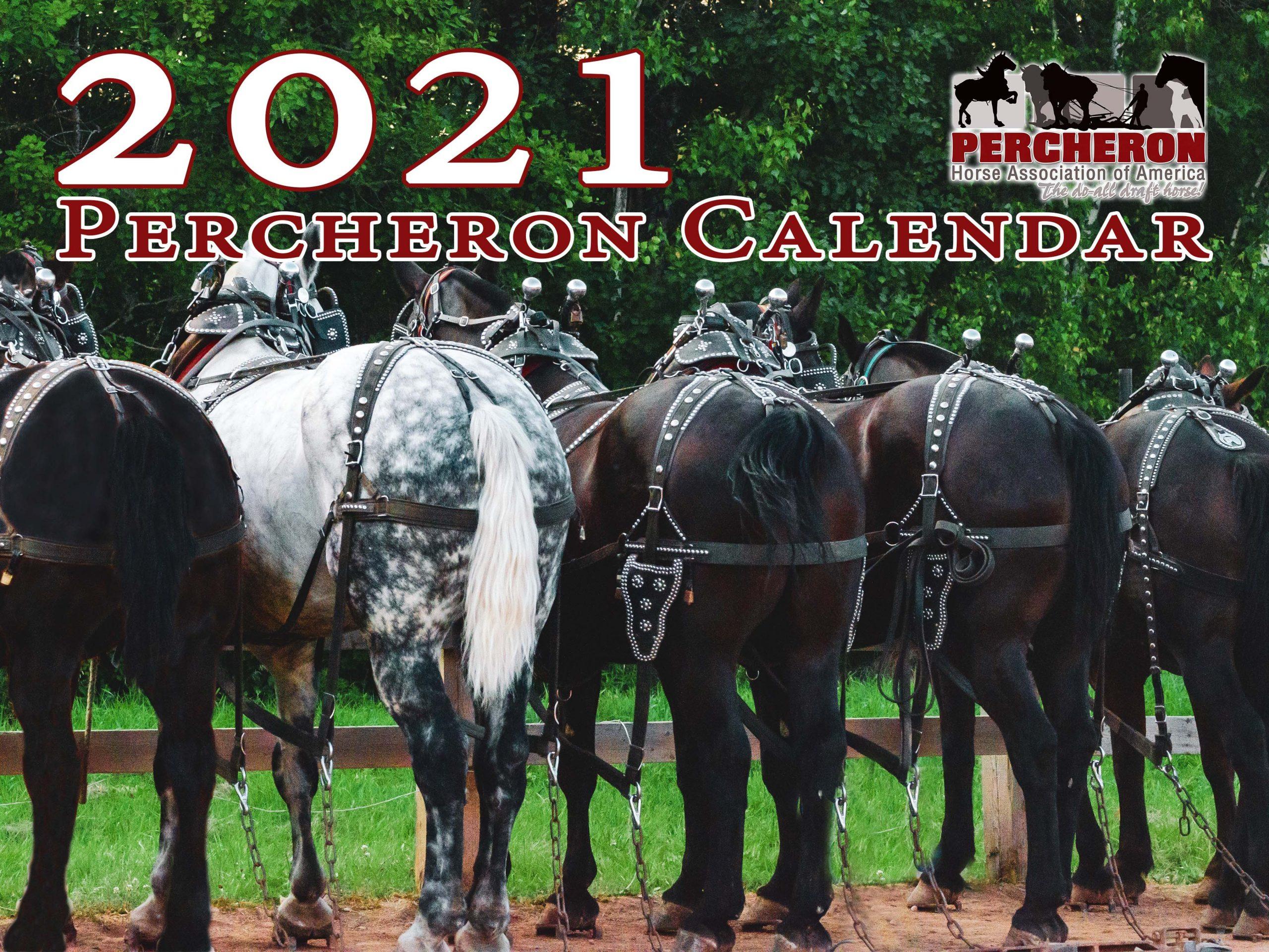 Usdf Region 3 Calendar 2021 Wallpaper
