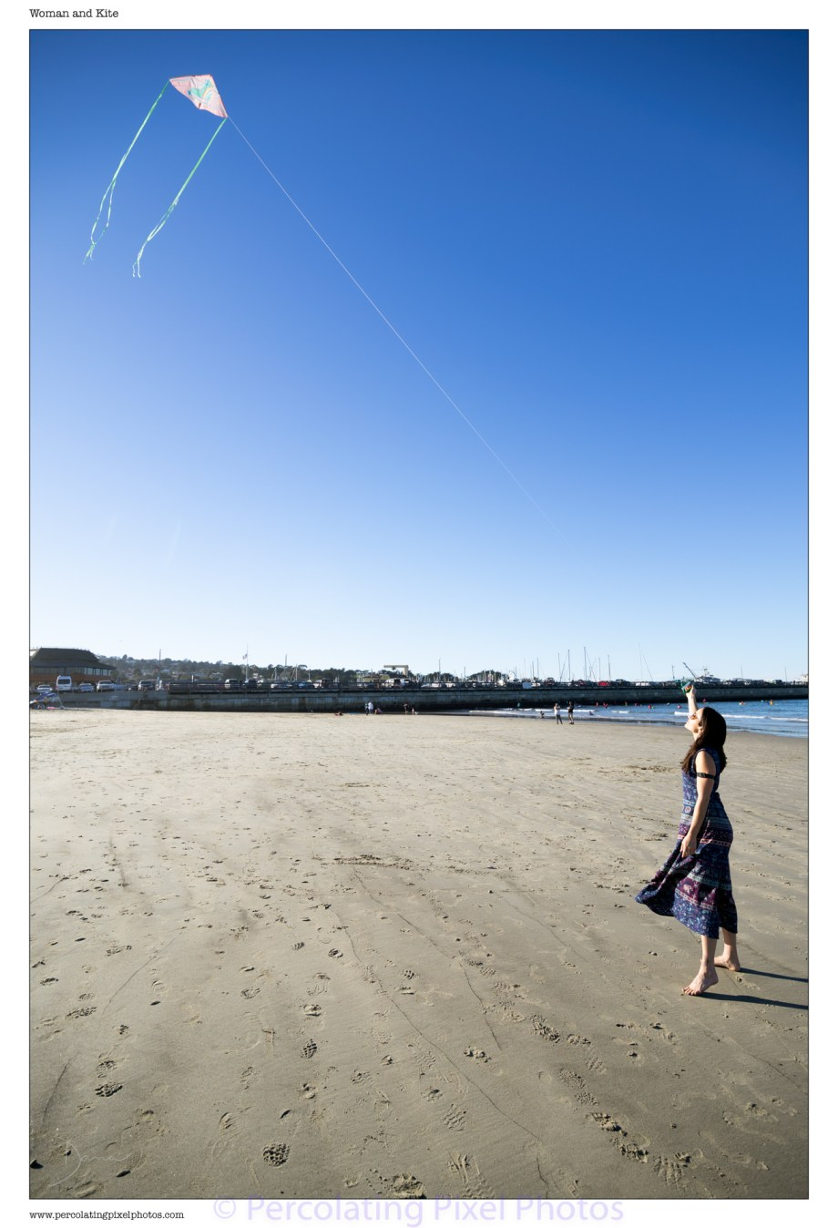 Woman and Kite on a Beach