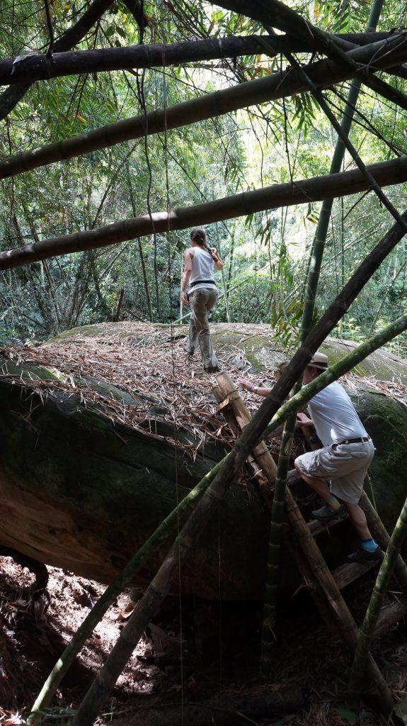 Reserva Cauquita
