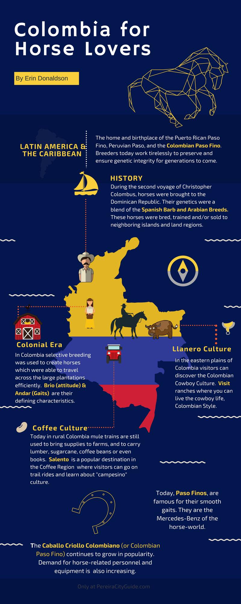 Paso Fino Colombiano