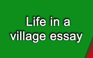 Life in a village essay