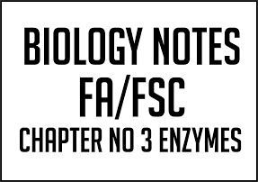 Chapter No 3 Enzymes