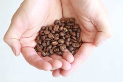 Recently roasted and freshly ground beans are also vital.