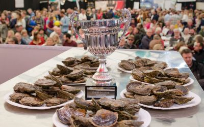 21st Annual Falmouth Oyster Festival