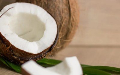 Coo Coo for Coconut Products???