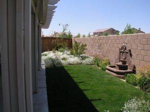 Victorville back yard