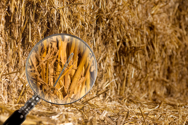 Finding talent is like finding a needle in a haystack