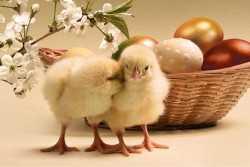 Ποια είναι η προέλευση του Πάσχα που γιορτάζει ο Χριστιανικός κόσμος και των συνηθειών που συνδέονται με αυτό;