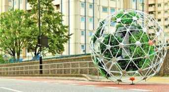 Ρομποτικός κήπος κινείται προς αναζήτηση ήλιου!
