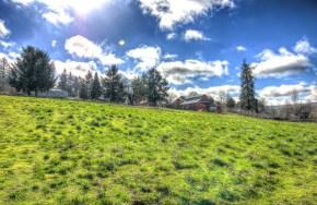 Zenger Farm Feb 22nd 2016 Nick Macdonald-50