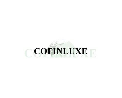 Perfumart - cofinluxe_logo