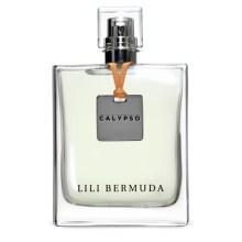 Perfumart - resenha do perfume Calypso