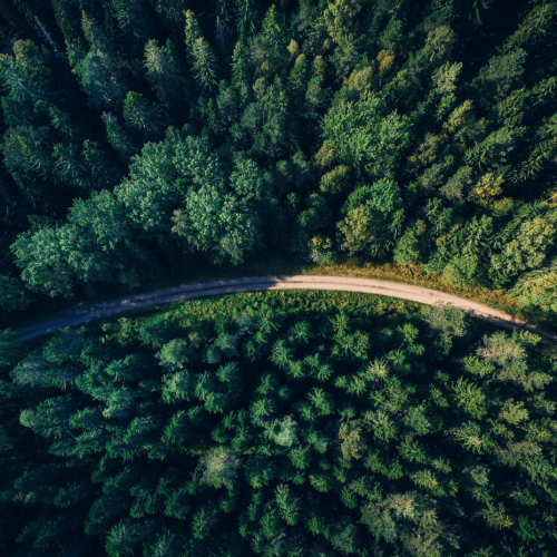 WANT TO GO GREEN WHEN TRAVELING? MAKING THE CHOICE IS EASIER THAN EVER BEFORE | Perille.fi