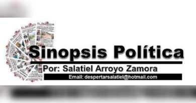 SINOPSIS POLITICA